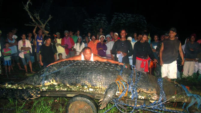 "FILE-In this Sept. 4, 2011 file photo, residents watch as Mayor Cox Elorde of Bunawan township, Agusan del Sur province, pretends to measure a huge crocodile, later named ""Lolong,""  after its capture by residents and staff of a crocodile farm along a creek in Bunawan in southern Philippines. The saltwater male crocodile, measuring 20.24 feet  (6.17 meters) and proclaimed by Guinness World Records as the world's largest saltwater crocodile in captivity, died Sunday, Feb. 10, 2013. (AP Photo/File)"