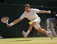 Jul 4, 2014; London, United Kingdom; Grigor Dimitrov (BUL) in action during his match against Novak Djokovic (SRB) on day 11 of the 2014 Wimbledon Championships at the All England Lawn and Tennis Club. Susan Mullane-USA TODAY Sports