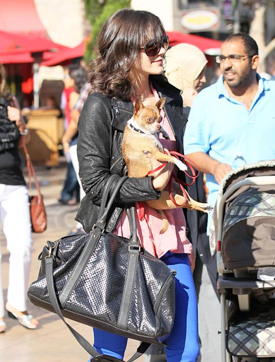 Celebrity pets: Now that's one way to travel in style! Zoeey Deschanel's pup stays in her arms.