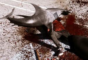 Sharknado | Photo Credits: Syfy