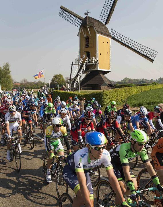 The peleton rides past a windmill during the Amstel Gold cycling race near Valkenburg