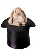 Pull the Social Media Rabbit Out of the Hat: Social Media Tricks That Work image tumblr inline mjz9wbKgM81qz4rgp