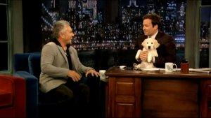 Dog Whisperer Works Magic on Jimmy Fallon's New Pup (Video)