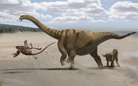 Plant-eating dinosaurs called sauropods had the longest necks in the animal kingdom. Here an adult Brontomerus mother.