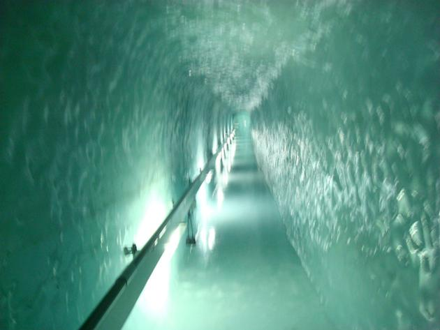 Tunnels of ice