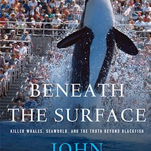 'Beneath the Surface': Read Shocking SeaWorld Revelations in 'Blackfish' Star's New Tell-All Book (Exclusive Excerpt)