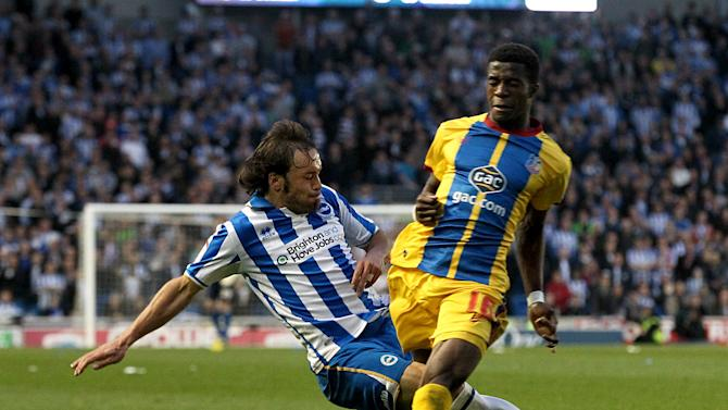 Soccer - npower Football League Championship - Play Off - Semi Final - Second Leg - Brighton and Hove Albion v Crystal Palace - AMEX Stadium