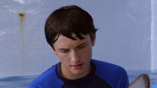 Dolphin Tale 2: Look Who's Running The Show (Featurette)