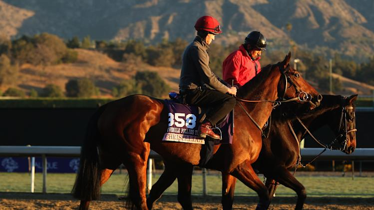 2013 Breeders' Cup World Championships - Previews