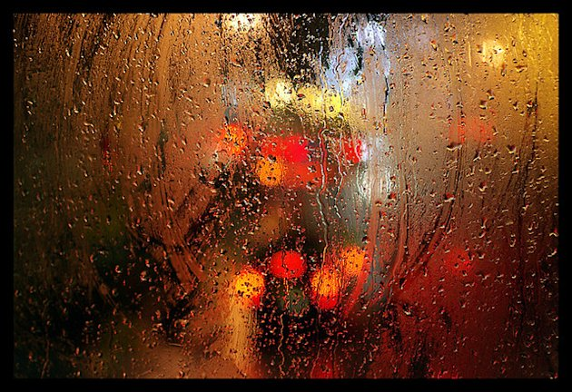 Wet London: On The Bus