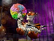 "Encore for the ""Madagascar"" circus"