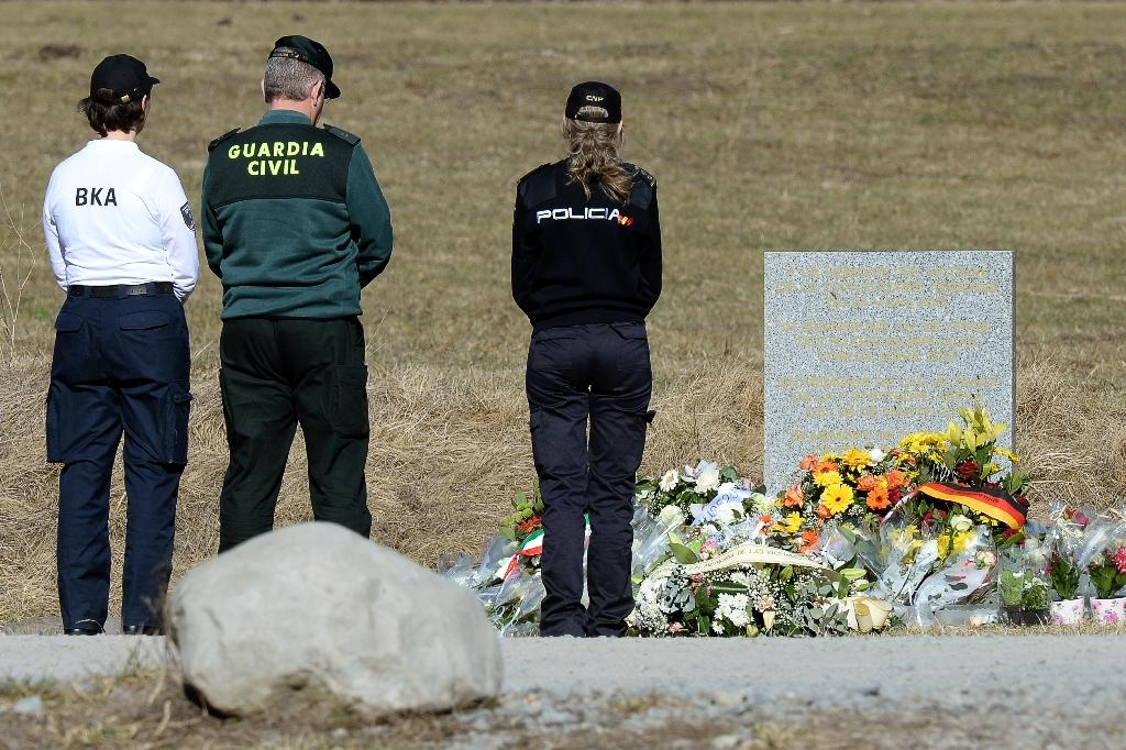 Alps crash pilot told ex 'everyone will know my name': report