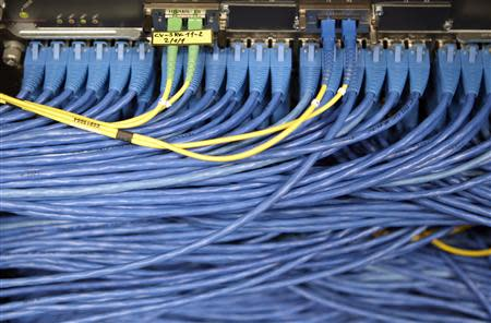 LAN cables are pictured on the Internet server near Lausanne, Switzerland May 9, 2011. REUTERS/Denis Balibouse
