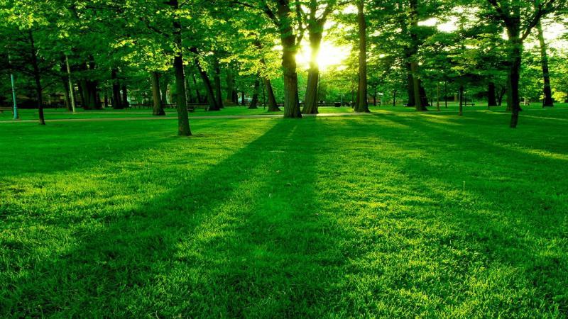 Le opportunità Green degli Emergenti