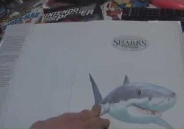 The Hilarious Thoughts of Cartoon Sharks