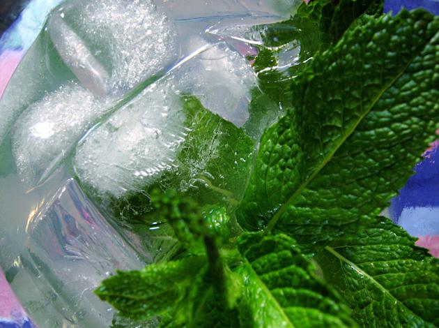 Make a mint simple syrup