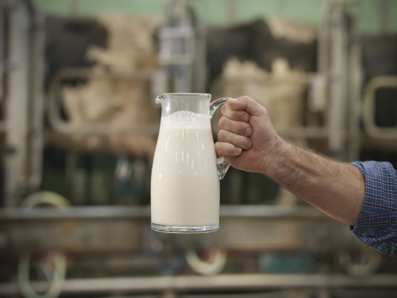 El problema lácteo: Tras el Brexit los productos como la mantequilla, el yogur y el queso podrían ser un lujo