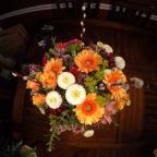 Petal Pusher Florist