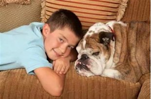 Boy and Bulldog via Shutterstock