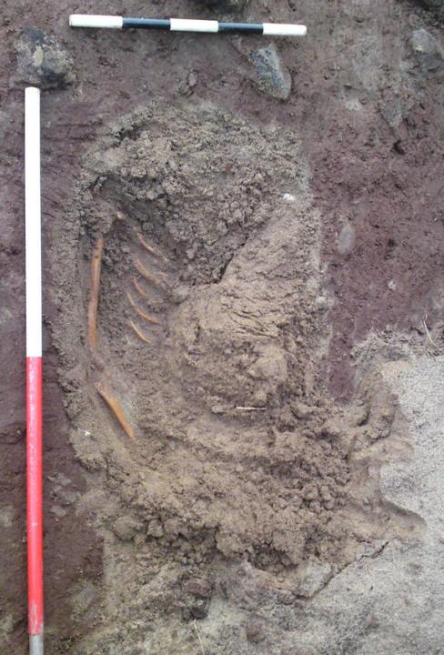 Storms Reveal Iron Age Skeleton
