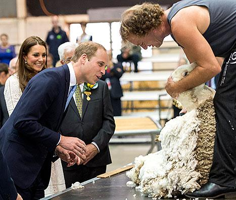 Kate Middleton Teases Prince William About His Bald Spot, Jokes He Should Wear Alpaca Wig