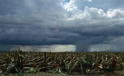 A rain cloud hangs over a flattened banana plantation in Compostela Valley province, in the aftermath of Typhoon Bopha, on December 8, 2012. Tropical Storm Wukong left five people dead and three missing as it cut through the central Philippines on Christmas Day, following devastating Bopha that killed hundreds earlier this month, according to officials.
