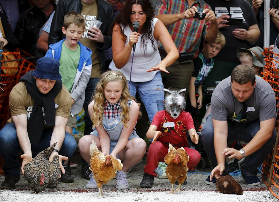 Competitors release their hens during the World Championship Hen Racing Championships in Bonsall