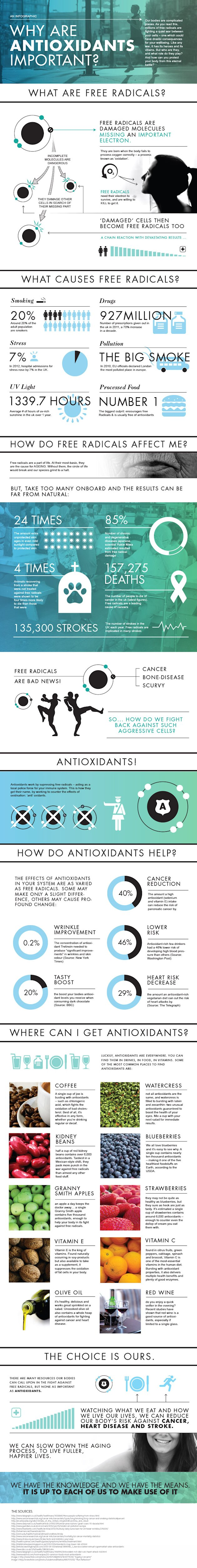 Why Are Antioxidants Important? [Infographic] image Antioxidant Infographic SpaceNK web