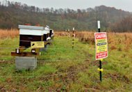 This Nov. 17, 2014 photo shows where Wade Stiltner, state Department of Agriculture apiary inspector, runs a pilot program of bee hives for honey production on a reclaimed mine in Hernshaw, W.Va. (AP Photo/Tyler Evert)