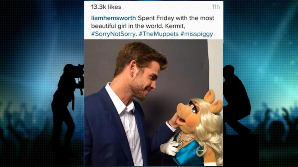 Liam Hemsworth Bonds With 'Most Beautiful Girl in the World'