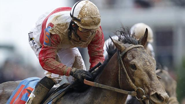 Horse Racing - Kentucky Derby 2013: What they said