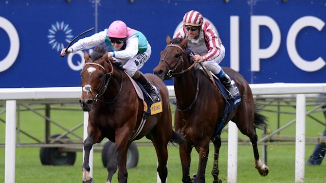 Frankel's first foal born at Coolmore Stud