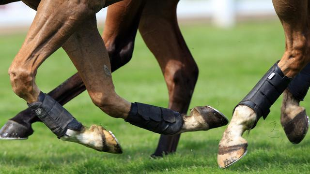 Horse Racing - Last Instalment romps to surprise win in Irish Hennessy