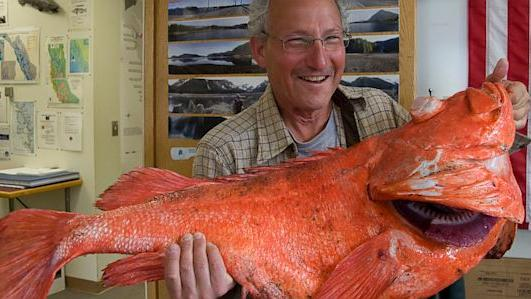 Seattle Man Catches 200-Year-Old Fish