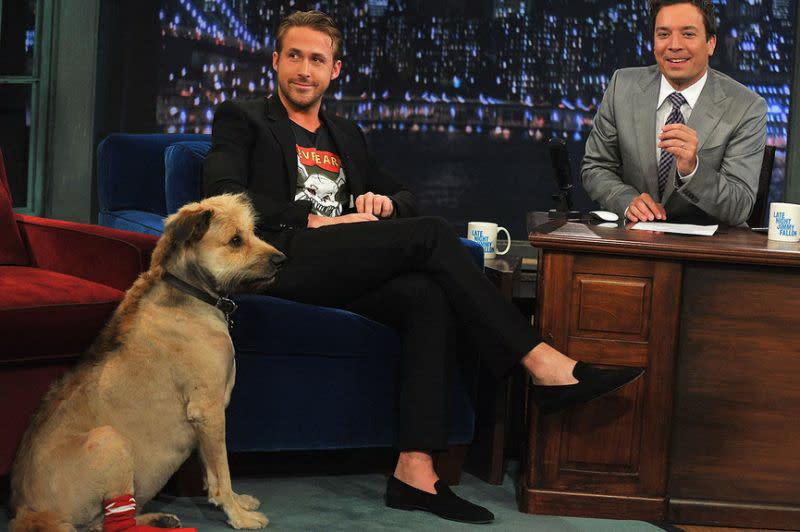 <p>三、雷恩葛斯林(Ryan Gosling):演出《樂來樂愛你》、新片《登月先鋒》的性感男星雷恩葛斯林,有個與他成雙入對的愛犬喬治。雷恩葛斯林2000年從收容所裡抱回了喬治,也讓牠從此陪伴雷恩葛斯林一起勇闖演藝圈,甚至一起走進婚姻、成家立業。喬治在2017年12月病逝,讓雷恩葛斯林相當不捨,為一解思念更登上節目「艾倫秀」大談他與喬治的記憶。雷恩葛斯林感性表示:「喬治是我一生中最好的朋友,我會永遠記得與喬治相處的每一天。」(圖:Yahoo奇摩新聞) </p>