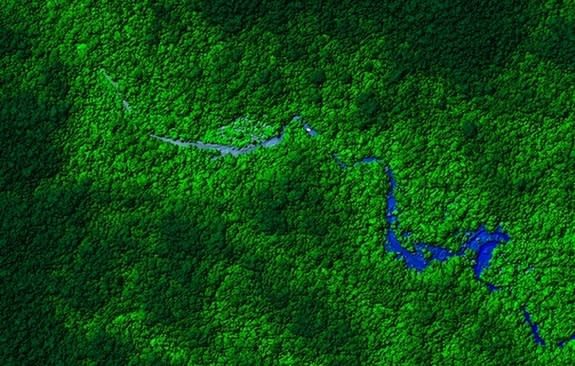 View of Honduras rainforest. Laser mapping scientists flew over a remote part of the forest and discovered what appear to be ruins. The next step is to visit the ruins in person to determine their age.