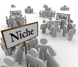 Digital Marketing Strategy: Q&A on How to Get Started in a Niche image Niche