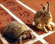 You Don't Buy a Good Reputation, You Earn It image tortoise hare