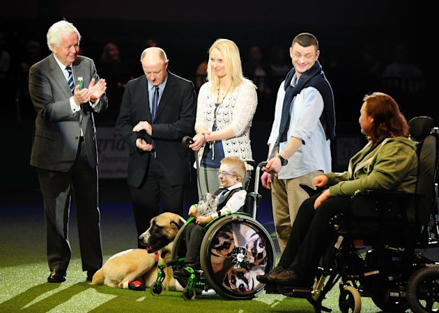 Seven year old Owen Howkins holds the trophy at Crufts 2013, NEC, Birmingham after his dog, Haatchi, an Anatolian Shepherd Dog, won first place in the Friends for Life award