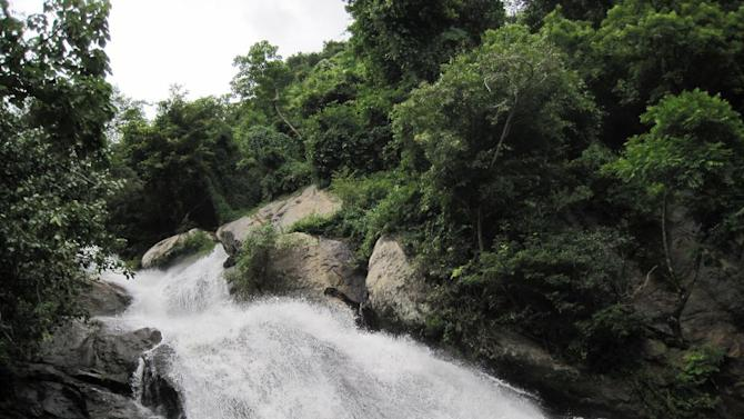 Travel Monkey Falls Tamil Nadu Waterfall