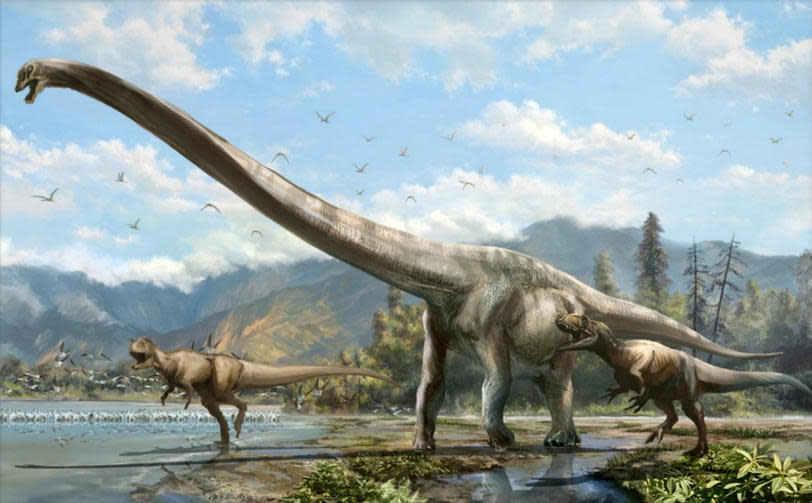 50-foot-long 'dragon' dinosaur species discovered in China