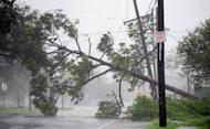 A fallen tree blocks a road in New Orleans, Louisiana on Wednesday as Hurricane Isaac battered the city. Hurrican Isaac is a powerful reminder of the urgent need to lower greenhouse gas emissions, says a delegate to UN climate talks in Bangkok