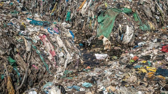 Photographer captures plastic pollution 'nightmare' in India ahead of Earth Day