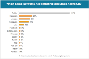 Marketing Executives Turn to Vine More than Pinterest and Tumblr image Scaled Social Networks Marketers Active On Q12013