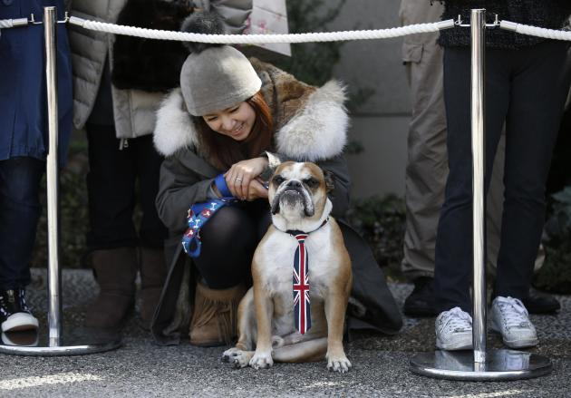 A bulldog wearing a tie featuring the Union Flags (also known as the Union Jack) sits on the ground with the owner as they wait for the arrival of Britain's Prince William (not pictured), Duke of