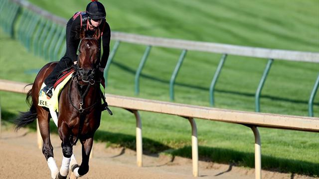 Horse Racing - Lucky draw for Orb at Preakness Stakes