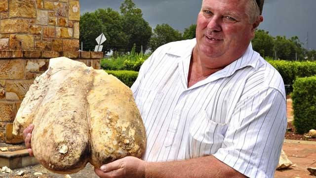 Stone Breasts Survive Lightning Strike