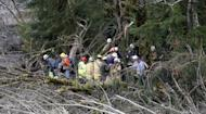 Searchers stand at a tree line at the scene of a deadly mudslide, Wednesday, March 26, 2014, in Oso, Wash. Sixteen bodies have been recovered, but authorities believe at least 24 people were killed. And scores of others are still unaccounted for, although many of those names were believed to be duplicates or people who escaped safely. (AP Photo/Rick Wilking, Pool)