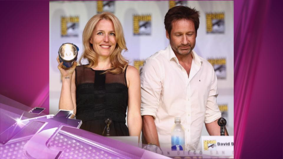 Entertainment News Pop: Gillian Anderson: Sex Scene With David Duchovny On 'The X-Files' Never Happened'