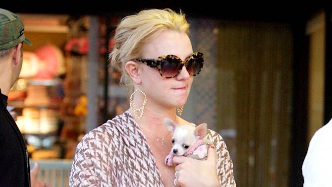 Spears Britney With Dog